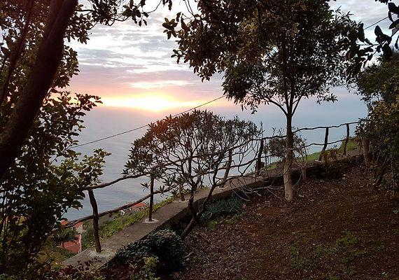 www.go-madeira.com  Madeira